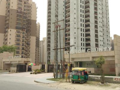 Gallery Cover Image of 1145 Sq.ft 2 BHK Apartment for rent in Sector 137 for 15000
