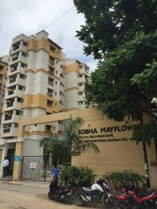 Gallery Cover Image of 1670 Sq.ft 3 BHK Apartment for rent in Bellandur for 40000