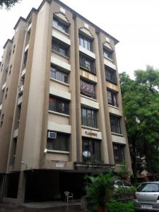 Gallery Cover Image of 575 Sq.ft 1 BHK Apartment for rent in Wanwadi for 16500