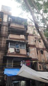Gallery Cover Image of 530 Sq.ft 3 BHK Apartment for rent in Kandivali West for 49000