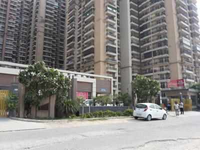 Gallery Cover Image of 1000 Sq.ft 2 BHK Apartment for buy in Crossings Republik for 2800000