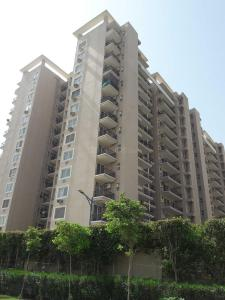 Gallery Cover Image of 650 Sq.ft 2 BHK Apartment for rent in Sector 69 for 18000