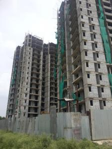 Gallery Cover Image of 1525 Sq.ft 3 BHK Apartment for rent in Noida Extension for 27000