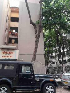 Gallery Cover Image of 450 Sq.ft 1 BHK Apartment for rent in Malad East for 24000