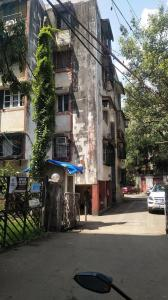 Gallery Cover Image of 480 Sq.ft 1 BHK Apartment for rent in Andheri East for 32000