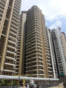 Gallery Cover Image of 1060 Sq.ft 2 BHK Apartment for rent in Casa Woodstock, Noida Extension for 10500