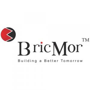 BricMor Infra Projects Private Limited logo
