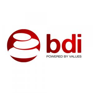 Berry Developers & Infrastructure Pvt. Ltd. logo