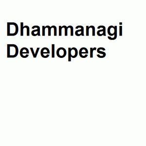 Dhammanagi Developers logo