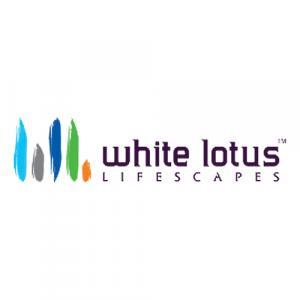 White Lotus Lifescapes logo