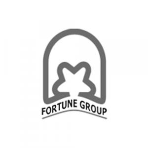 Fortune Group logo