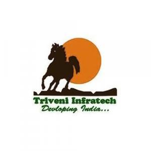 Triveni Infratech logo