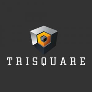 Trisquare Properties Pvt Ltd logo