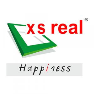 X S Real Properties Pvt. Ltd logo