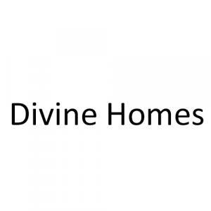 Divine Homes logo