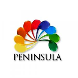 Peninsula Infra Development Pvt. Ltd. logo