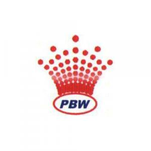 Punit Buildwell logo