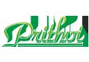 Prithvi Property Developers logo