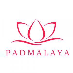 Padmalaya Projects LLP logo
