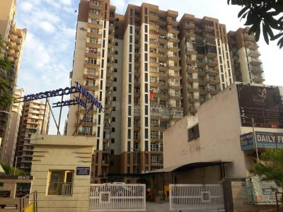 Gallery Cover Pic of Kingswood Infrastructure Pvt Ltd Court