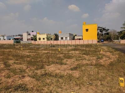 Budget Hariprasad Nagar Plot