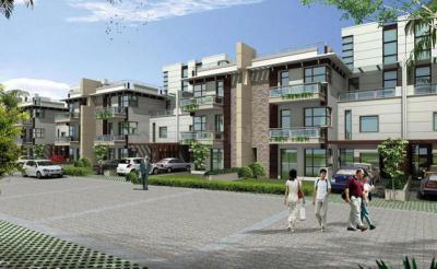 Gallery Cover Image of 4600 Sq.ft 5 BHK Apartment for rent in Tulip Ivory Villas, Sector 70 for 75000