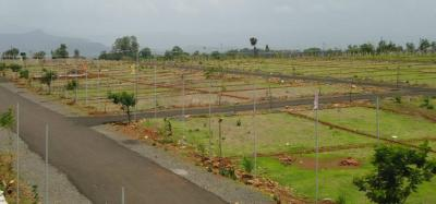 1000 Sq.ft Residential Plot for Sale in Bhawrasla, Indore