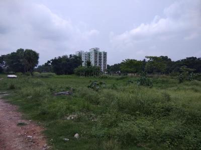 Gallery Cover Pic of SMGA Sampriti Garden