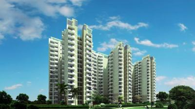 Gallery Cover Image of 1620 Sq.ft 3 BHK Apartment for rent in Avenue 71, Sector 72 for 21000