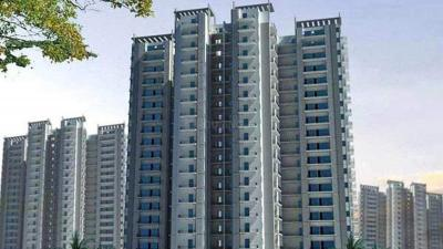 Gallery Cover Image of 1940 Sq.ft 4 BHK Independent Floor for buy in Kbnows Society Apartments by KBNOWS Group, Sector 16 for 7500000