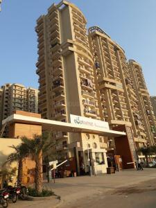 Gallery Cover Image of 1100 Sq.ft 2 BHK Apartment for rent in Aims Golf Avenue 2, Sector 75 for 18000