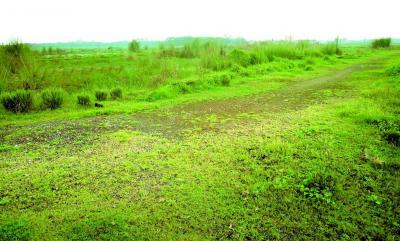 Residential Lands for Sale in Debrupayan De Nature Plot