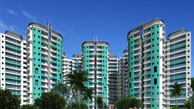 Gallery Cover Image of 950 Sq.ft 2 BHK Apartment for rent in Amrapali Zodiac, Sector 120 for 16000