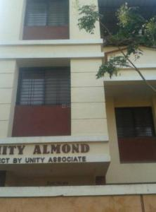 Gallery Cover Pic of Unity Almond