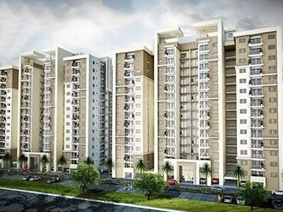 Gallery Cover Pic of Incor PBEL City Siesta