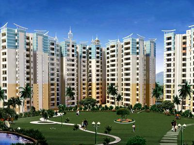 Gallery Cover Pic of Amrapali Village Phase 2