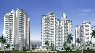 Gallery Cover Image of 2000 Sq.ft 4 BHK Apartment for rent in Towers, Sector 37 for 40000