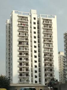 Gallery Cover Image of 1820 Sq.ft 4 BHK Independent Floor for rent in Maxblis White House II, Sector 75 for 25000