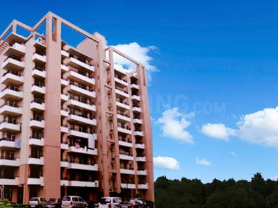 Gallery Cover Pic of Dynamik Sky View Apartments
