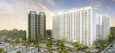Gallery Cover Pic of Paarth Canary Phase 1