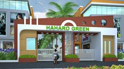 Gallery Cover Pic of Haharo Greens