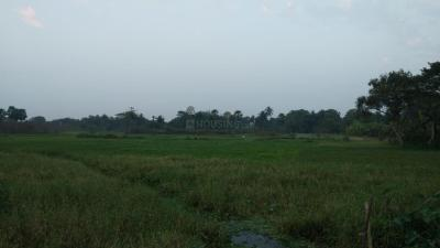 Residential Lands for Sale in Bhupati Amgachia Abasan