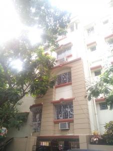 Gallery Cover Pic of Binayak Residency