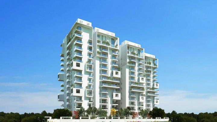 Trifecta Starlight In Bangalore Bangalore Urban Price