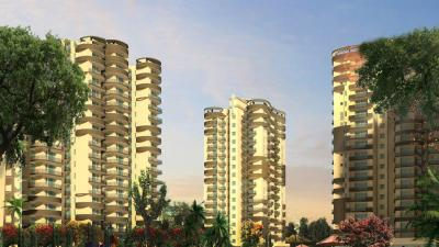 Gallery Cover Image of 1250 Sq.ft 2 BHK Apartment for rent in Victory Central, Noida Extension for 7000