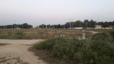 Homzsolutions Green Park