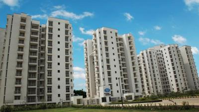 Gallery Cover Image of 1250 Sq.ft 2 BHK Apartment for rent in Piyush Group Heights, Sector 89 for 9000