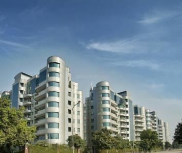 Gallery Cover Image of 4200 Sq.ft 4 BHK Apartment for rent in Omaxe The Forest, Sector 92 for 99999