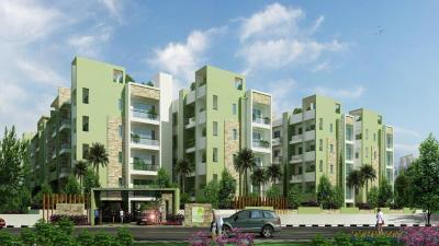 Sai Raghavendra's Bloomfields