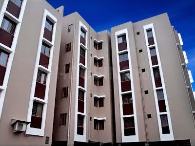 Premier Designs Parvati Krupa